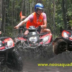 Noosa-Quad-Bike-Tours.jpg